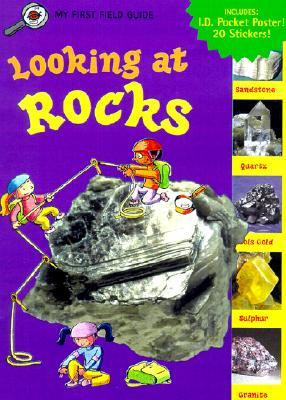 Looking at Rocks By Dussling, Jennifer/ Drew-Brook-Cormack, Deborah (ILT)/ Drew-Brook-Cormack, Allan (ILT)/ Haggerty, Tim (ILT)